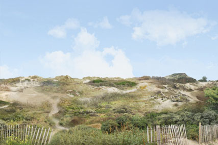 photo-grand-site-dune-flandres.jpg